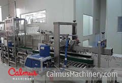 BIBPL500 China Bag-in-Box Packging Line for 3-25L Bags
